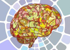 brain-951847_640