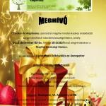 MEGHÍVÓ3 kari2
