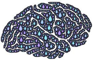 brain-962650_640